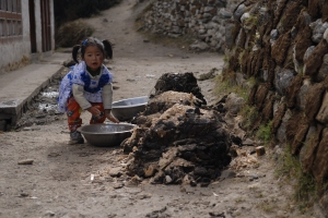 A young girl inspects her fine collection of dried yak dung